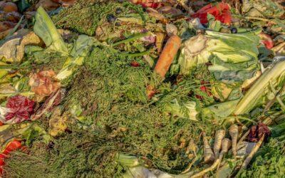 Réduire le gaspillage alimentaire, un moyen simple de faire des économies